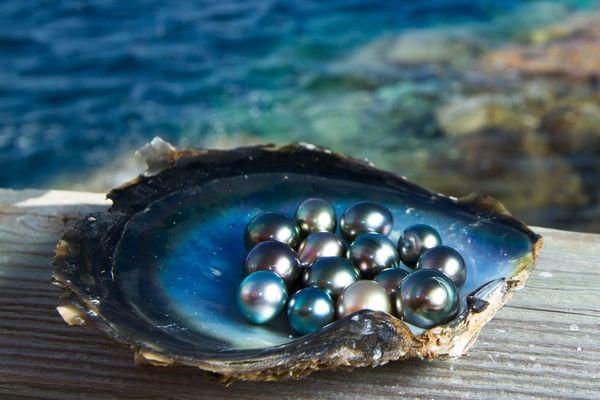 pearlss