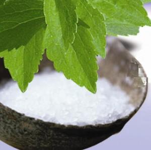 Stevia rebaudiana, cel mai popular indulcitor natural datorita indicelui glicemic zero