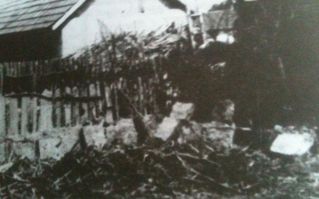 Casa în care a murit Gogu Puiu