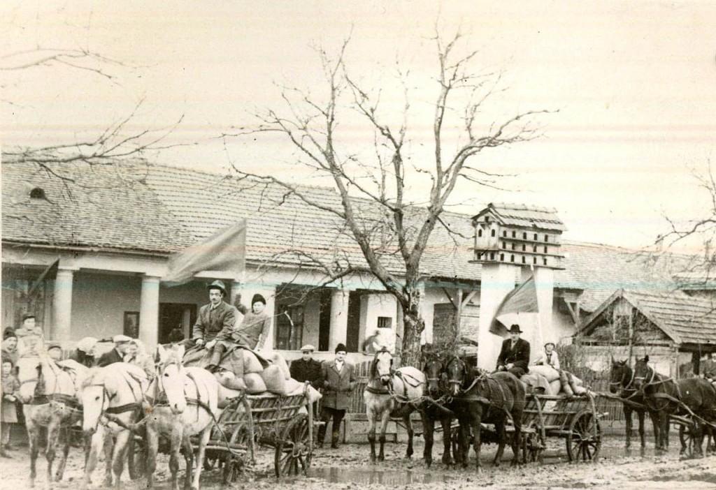 """ţărani luându-şi partea de recoltă de la GAC """"7 Noiembrie"""" Bihor — 1952 (sursa: wikipedia)"""