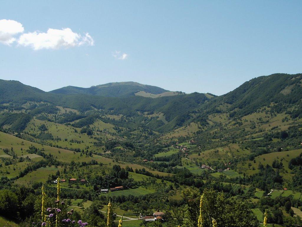 Cornereva. Sursa: Cornereva, Valea Râmna; http://www.panoramio.com/photo/1663759