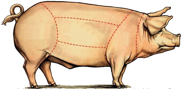 porc transa