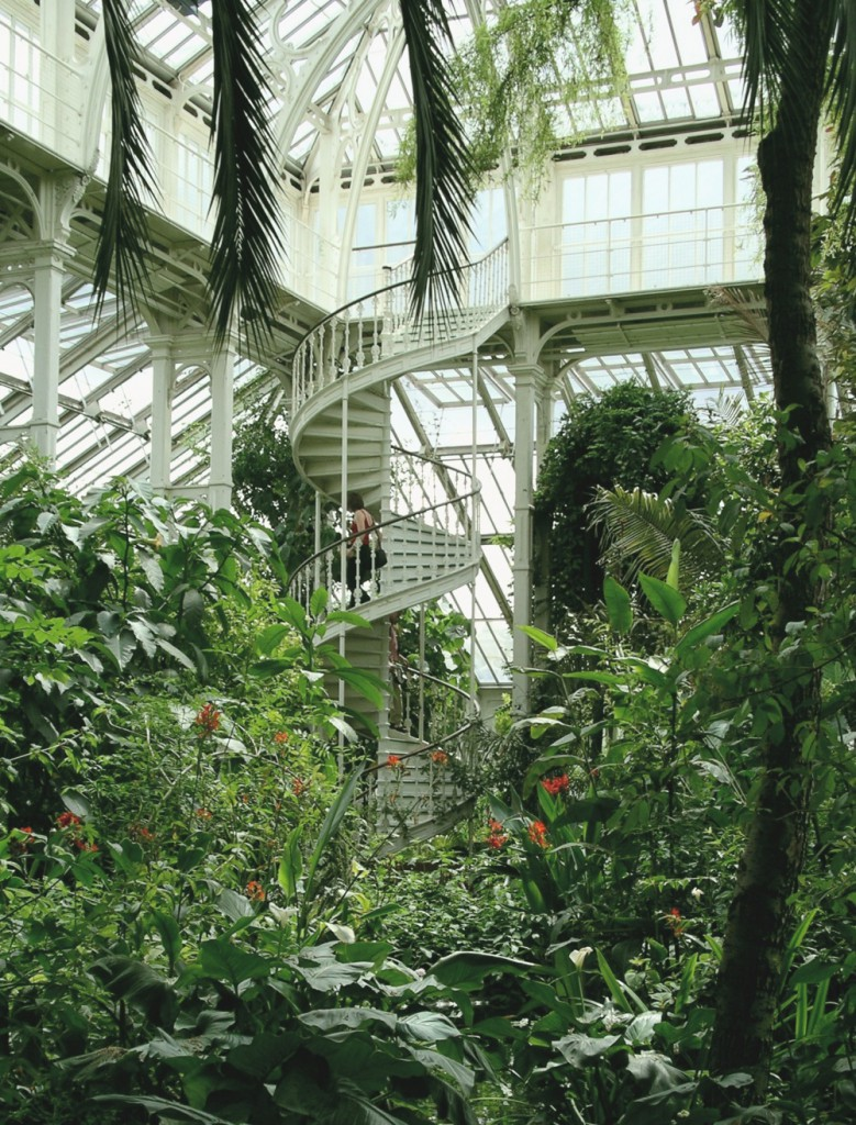 6494010-1000-1455180975-good-palm-gardens-5-palm-house-kew-gardens-1560-x-2052