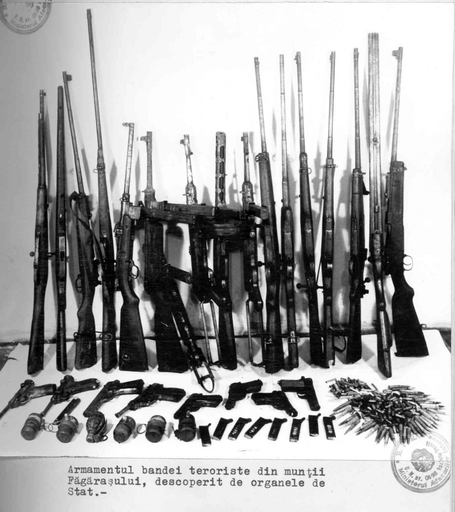 arme fagaras