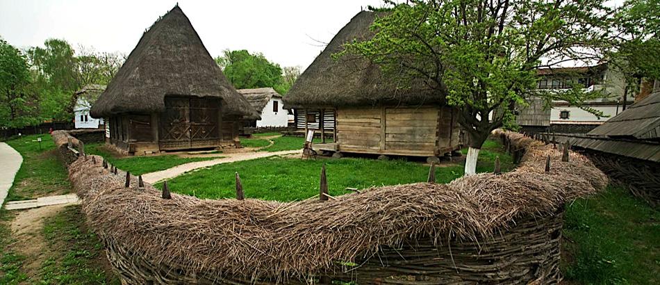 case taranesti din lemn