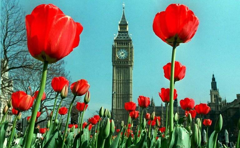 Londra, Big Ben. AFP PHOTO   / AFP PHOTO / JOHNNY EGGITT