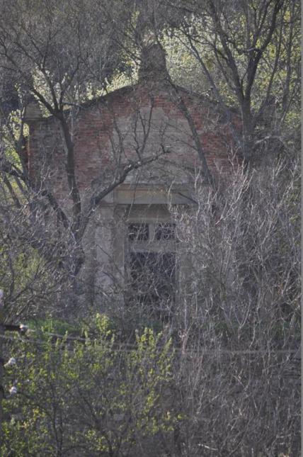 Cripta familiei Binder, Vurpăr. Foto: Cornelia Guju, aprilie 2013