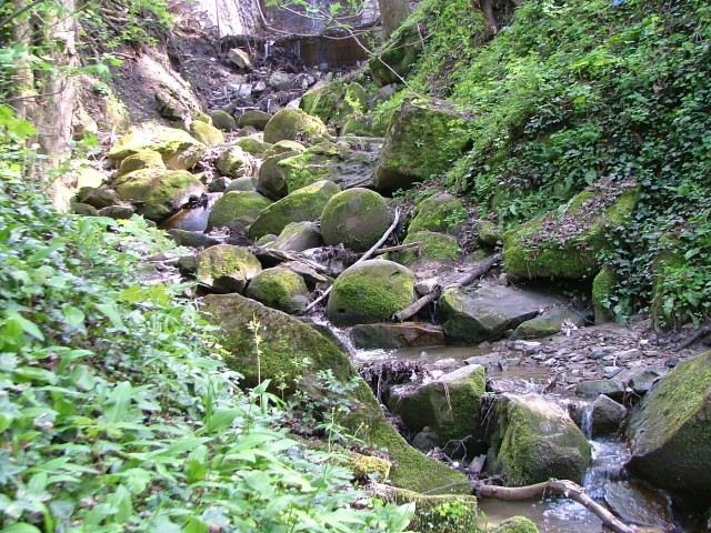 Pârâul Ţiganilor, https://ro.wikipedia.org/
