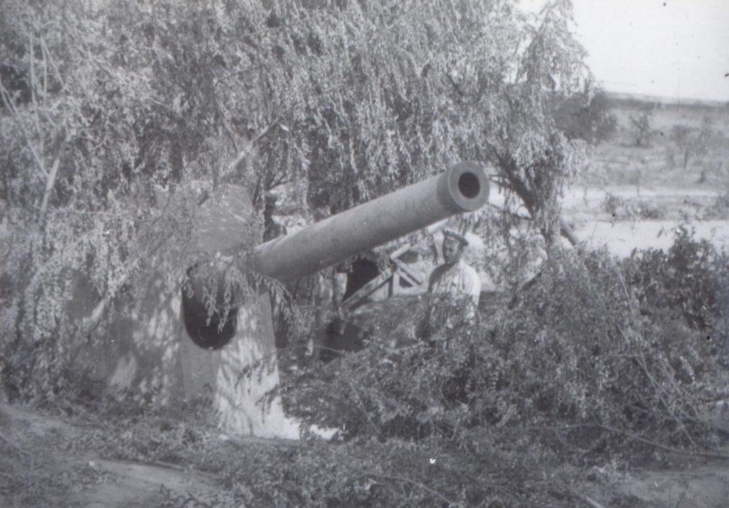 Tun mascat si marinar rus - Fototeca Muzeului Militar Naṭional
