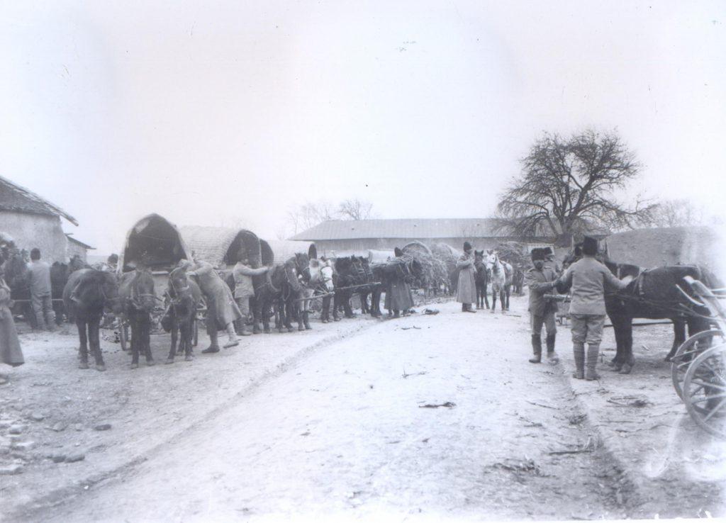 Cai la tren de lupta - Fototeca Muzeului Militar Naṭional