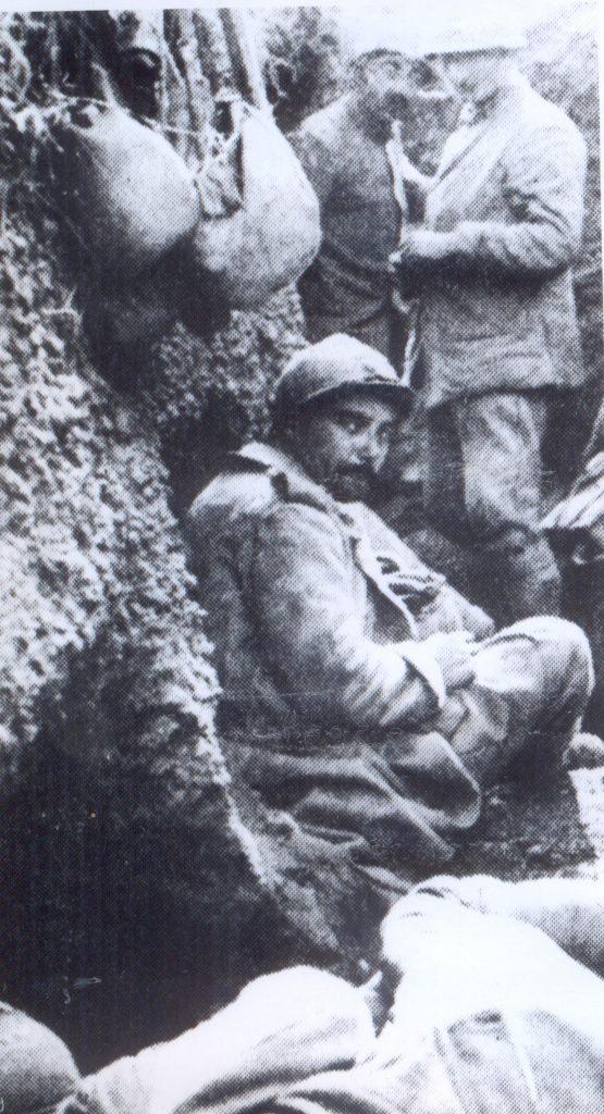 Transee - Fototeca Muzeului Militar Naṭional