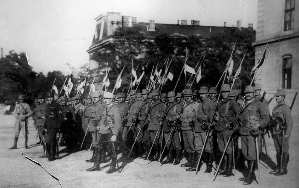 Rosiori in Ungaria (1919)
