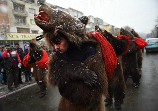 Ursul. / AFP PHOTO / DANIEL MIHAILESCU