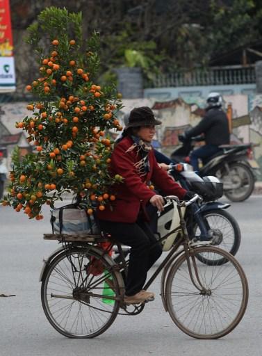 Hanoi / AFP PHOTO / HOANG DINH NAM