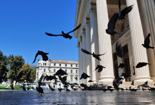 Pigeons fly on August 29, 2011 in front of the Romanian Atheneum in Bucharest, one of the concert venues for the 20th Enescu music festival, which will open on September 1 for 25 days of concerts and operas. The festival features a prestigious lineup, including conductors Daniel Barenboïm and Zubin Metha. The Bucharest festival was set up in 1958 to pay tribute to the famous Romanian composer and violonist George Enescu (1881-1955). Enescu, who trained violonists like late Yehudi Menuhin, is known among others for his symphonies and Romanian rhapsodies. AFP PHOTO / DANIEL MIHAILESCU / AFP PHOTO / DANIEL MIHAILESCU