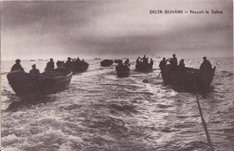 Delta Dunarii pescuit la sulina
