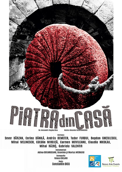 PIATRA DIN CASA(1)