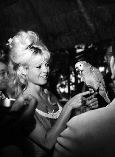 1964. / AFP PHOTO / STRINGER