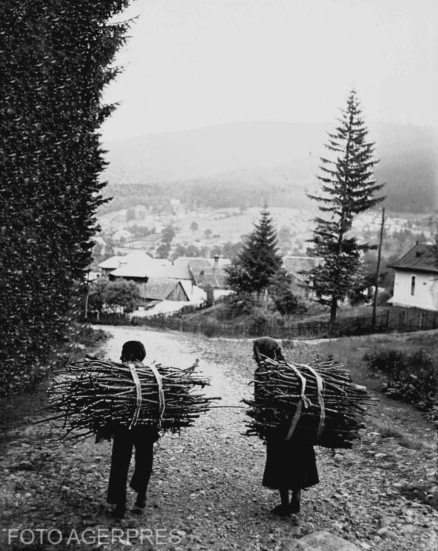 Sat de munte; tarani cu baloturi de crengi. (1936)
