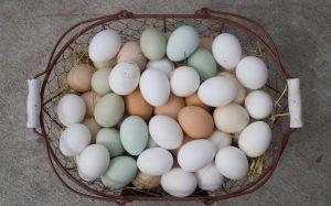 Basket-Eggs-Different-Colors.jpg.653x0_q80_crop-smart